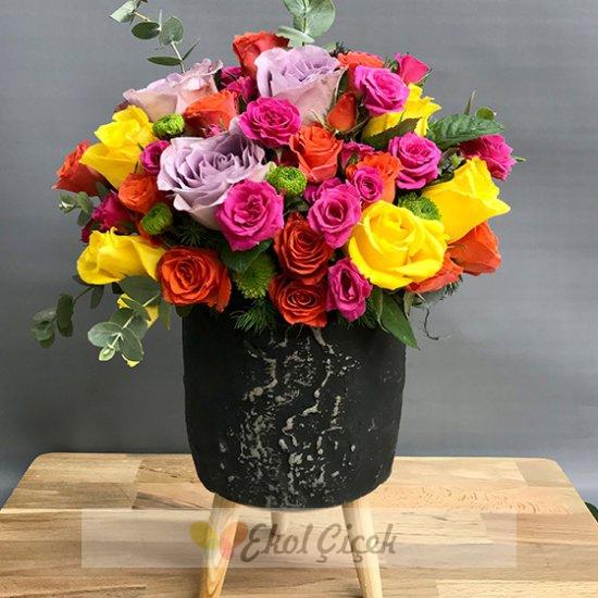 Siyah Saksıda Karışık Güller