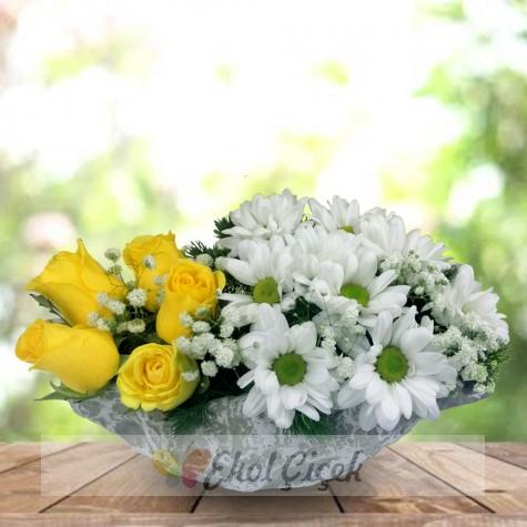 Kayıkta Sarı güller ve Papatyalar