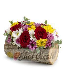 Kütükte Mevsim Çiçekleri